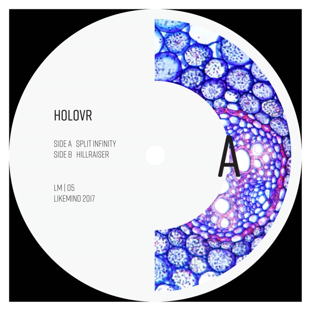 holovr-likemind-05